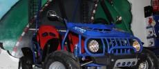 Buggie, motor 125CC, 4T Varios Colores