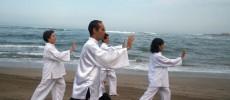 Seminarios de Qi Gong Terapéutico en Vipassana