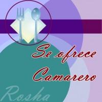 SE OFRECE CAMARERO